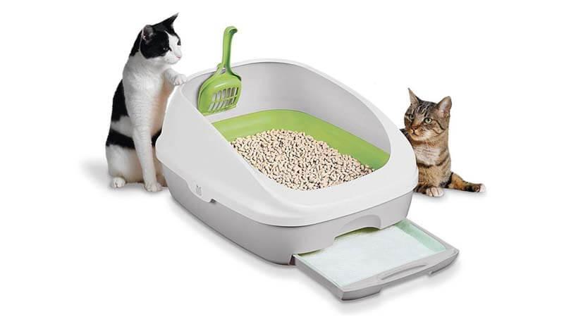 cara mencuci pasir kucing agar bersih dan tidak bau