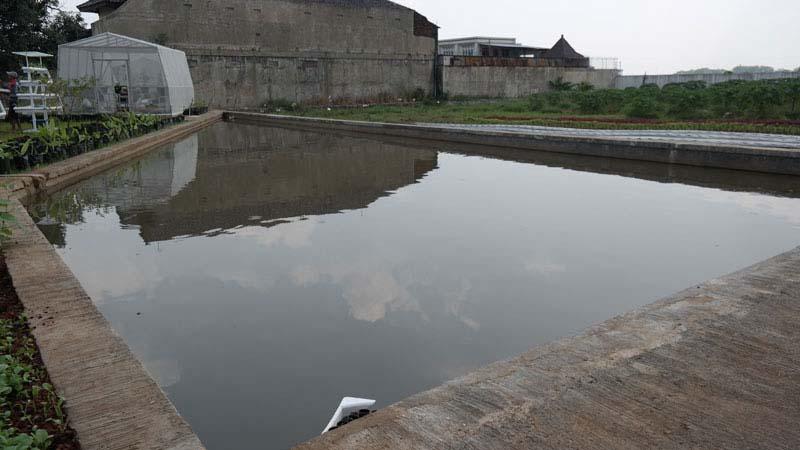 pergantian air kolam