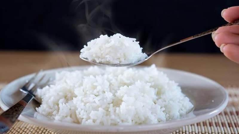 Umpan Ikan Patin Nasi